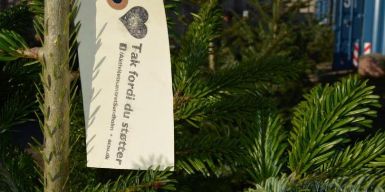 køb juletræ frederiksberg
